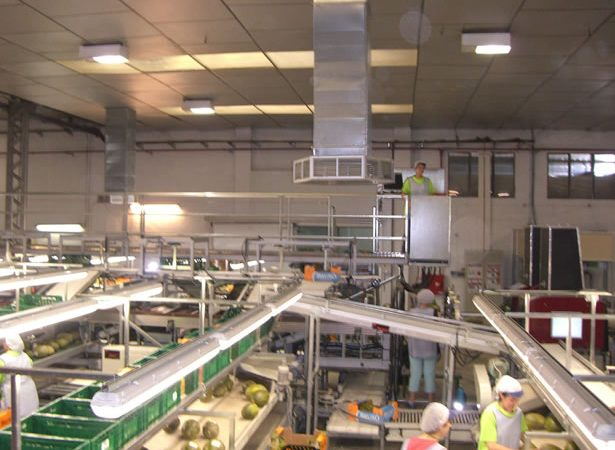 Nebulizacion Nave Industrial-1